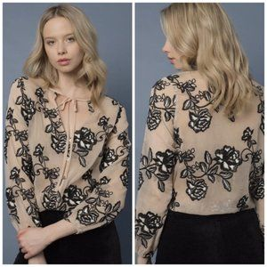 Goldie Embroidered Sheer Button Front Blouse